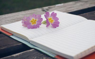 Tagebuch der Dankbarkeit und der schönen Momente