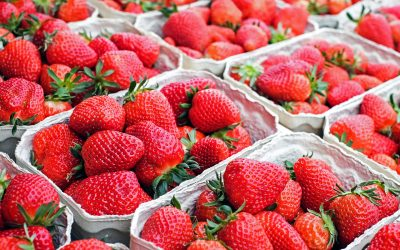 Erdbeer-Streuselkuchen (Muffins)